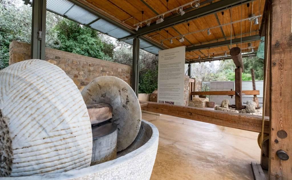 Μουσείο Ελιάς και Ελληνικού Λαδιού Σπάρτης